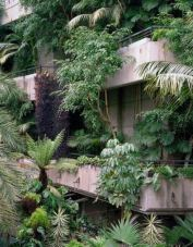 Evergreen inspiration - Barbican