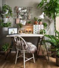 Evergreen inspiration - study